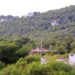 Αυθαίρετα - Δασικά Πώς «σώζονται» τα αυθαίρετα στα δάση με «τακτοποιήσεις»
